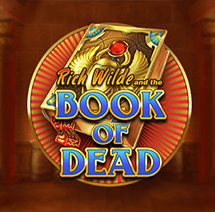 Book Of Dead Slot Image